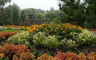 цветочная клумба